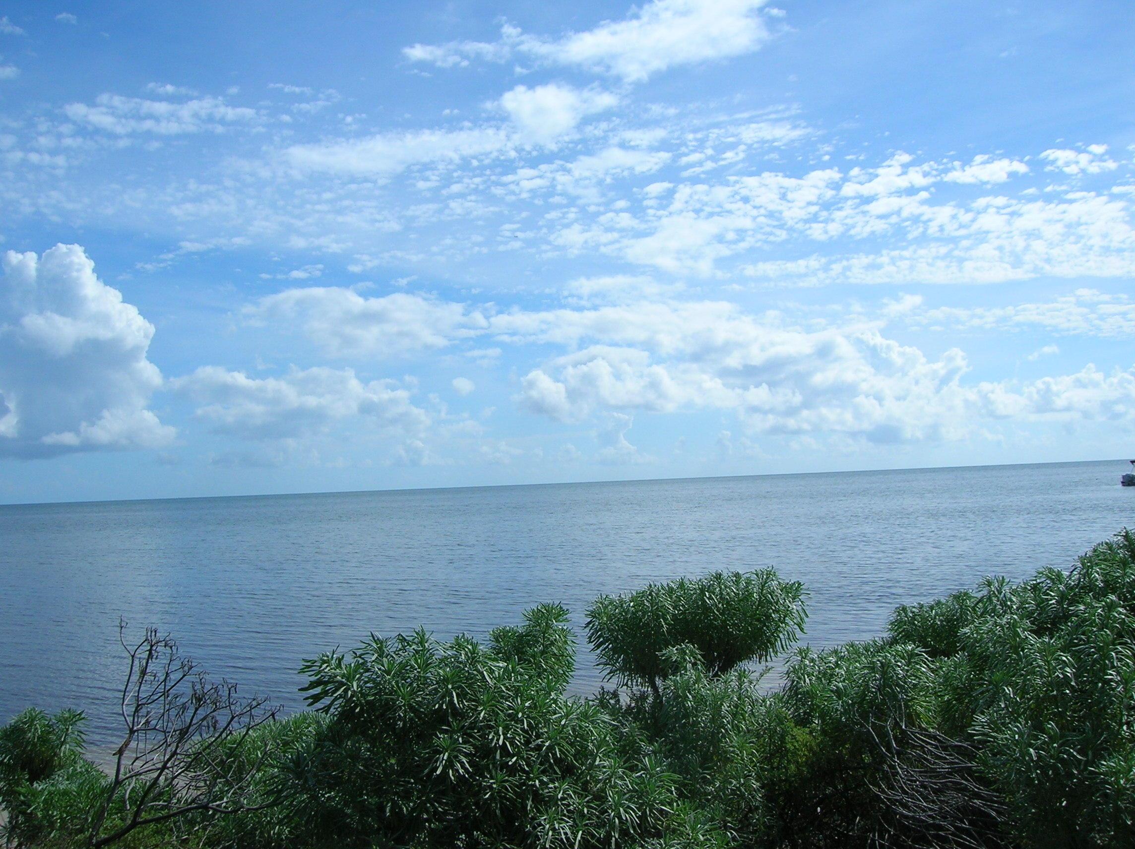 16 Cook Island