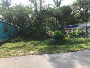 64 Ed Swift Road, Big Coppitt, FL 33040