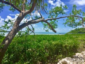 LOT 24 Pirates Cove Drive, Marathon, FL 33050