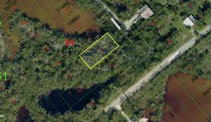 Vacant Conservation Lot, #1, Grassy Key, FL 33050