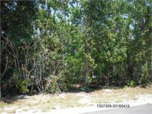 Hibiscus Drive, Big Pine Key, FL 33043