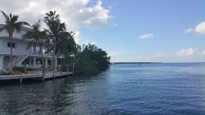 Open Water Side view
