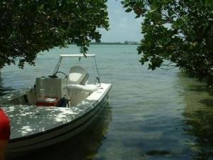 Vacant Land, Summerland Key, FL 33042