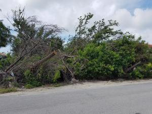 Vacant Alley, Key Largo, FL 33037