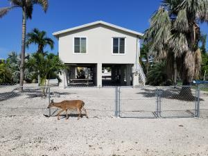 Beautiful Neighborhood in Key Deer Reserve