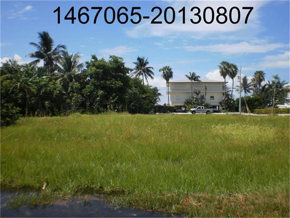 265 W Seaview Drive Duck Key, FL 33050 582094