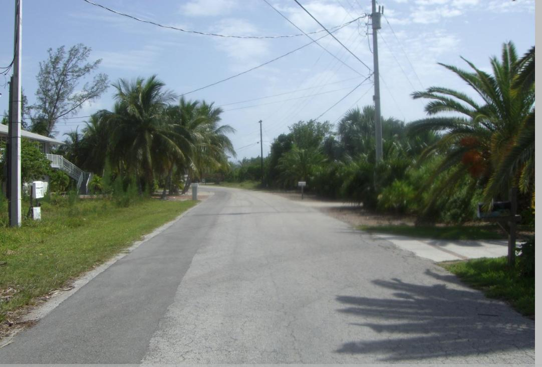 20 Jamaica Street