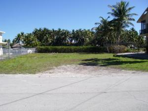 113 Sandy Cove Avenue, ISLAMORADA, FL 33036