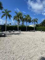 ROYAL PALMS ON CLEARED LOT VIEW