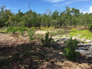 26868 Mariposa Road, Ramrod Key, FL 33042