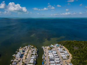 325  Calusa Street 497 For Sale, MLS 594063