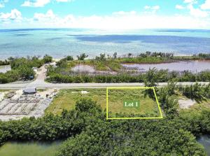 1690  Coco Plum Drive Lot 1 For Sale, MLS 595320