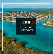 1 TDR, Lower Matecumbe, FL 33036
