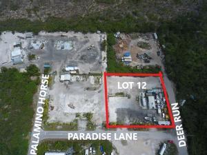 30230  Paradise Lane  For Sale, MLS 597183