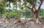 3732 Flagler Avenue, Key West, FL 33040