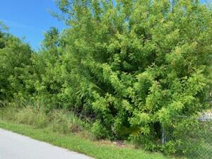 33 Canal Drive, Sugarloaf Key, FL 33042