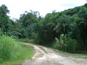 Chalan Nganga, Ordot-Chalan Pago, GU 96910