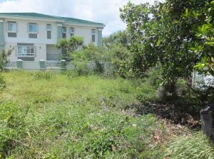 Ypao Road, Tamuning, GU 96913