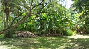 1145 E. Canton Tasi, Merizo, Guam 96915