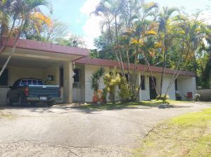 1040C Roy T. Damian Street, MongMong-Toto-Maite, Guam 96910