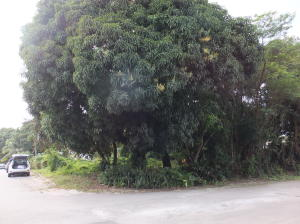 Calle Delos Marteres street, Agat, GU 96915