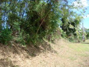 Ramirez Way, MongMong-Toto-Maite, GU 96910