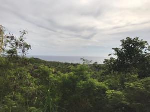 368 Chalan Kanton Ladera, Talofofo, Guam 96915