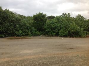 Tumon (Upper Tumon) Lane, Tamuning, GU 96913