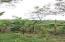 Chalan Victoriano, Ordot-Chalan Pago, GU 96910 - Photo Thumb #1