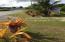 Route 4 Chalan Pago Ordot, Ordot-Chalan Pago, GU 96910 - Photo Thumb #8