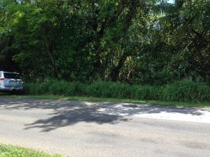 Route 4 Drive, Merizo, GU 96915