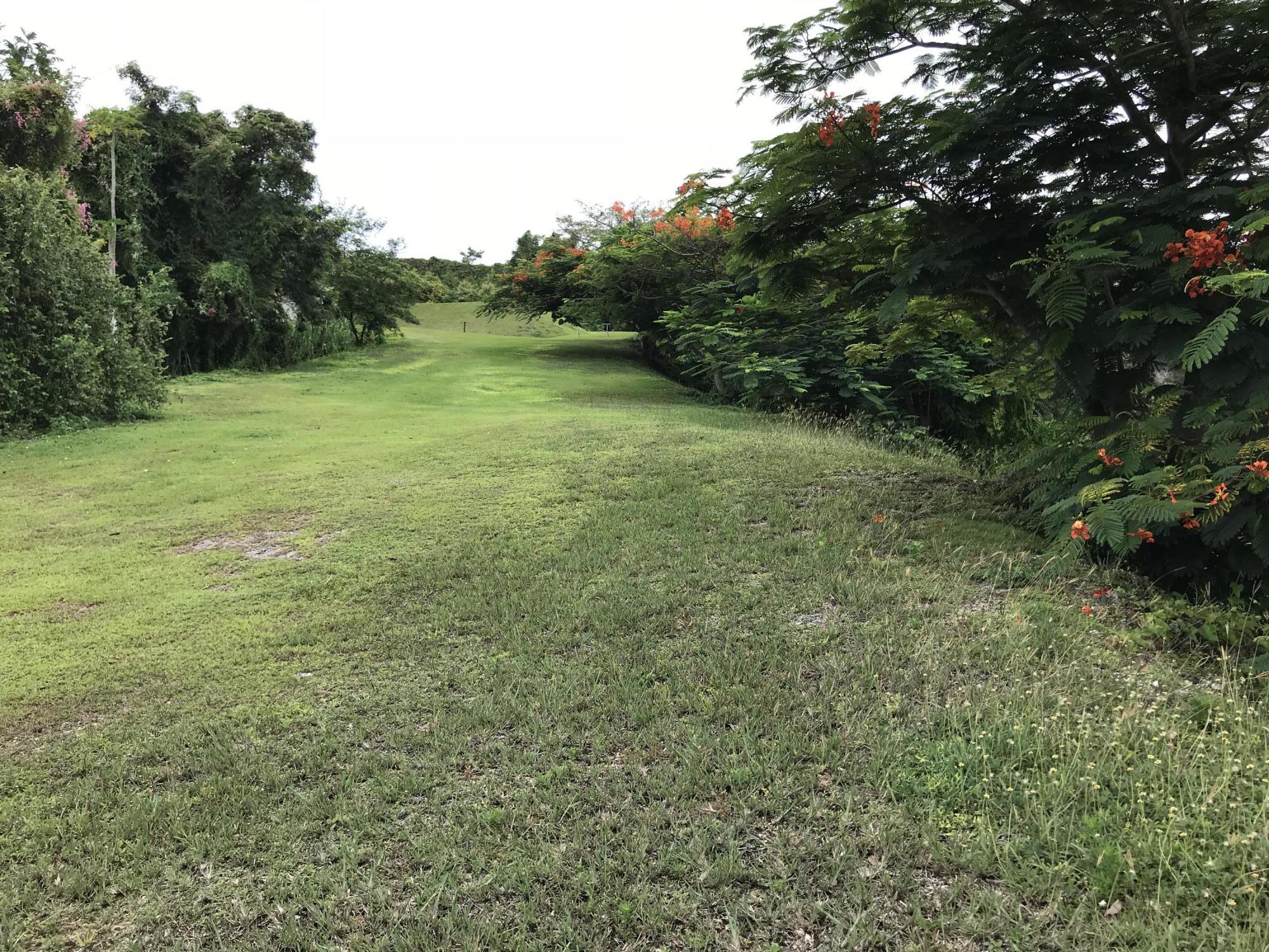 Perez Way, Tumon, GU 96913