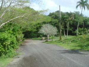 Hegai Street Maina, Agana Heights, GU 96910