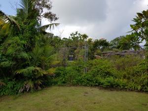 Goro Elena/Takano Road, Yigo, Guam 96929