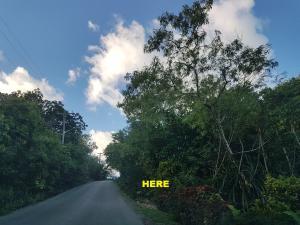 Akaling, Dededo, Guam 96929