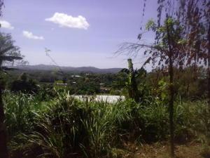 Off of Borja Street, Barrigada, Guam 96913