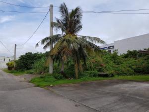 Tun Jose Leon Guerrero Street, Tamuning, GU 96913