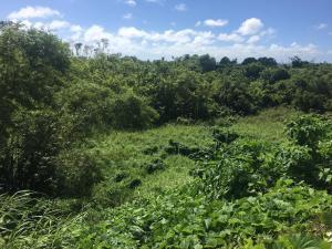 Lot 2368-14, Barrigada, Guam 96913