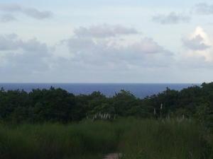 Route 15, Mangilao, Guam 96913