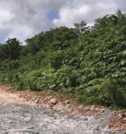 Chalan Markie Street, Dededo, Guam 96929