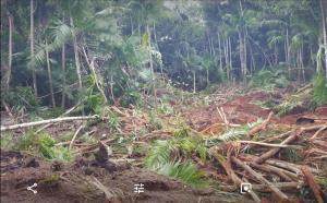 Dero, Ordot-Chalan Pago, Guam 96910