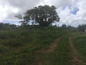 Chalan Piga Area, Dededo, GU 96929