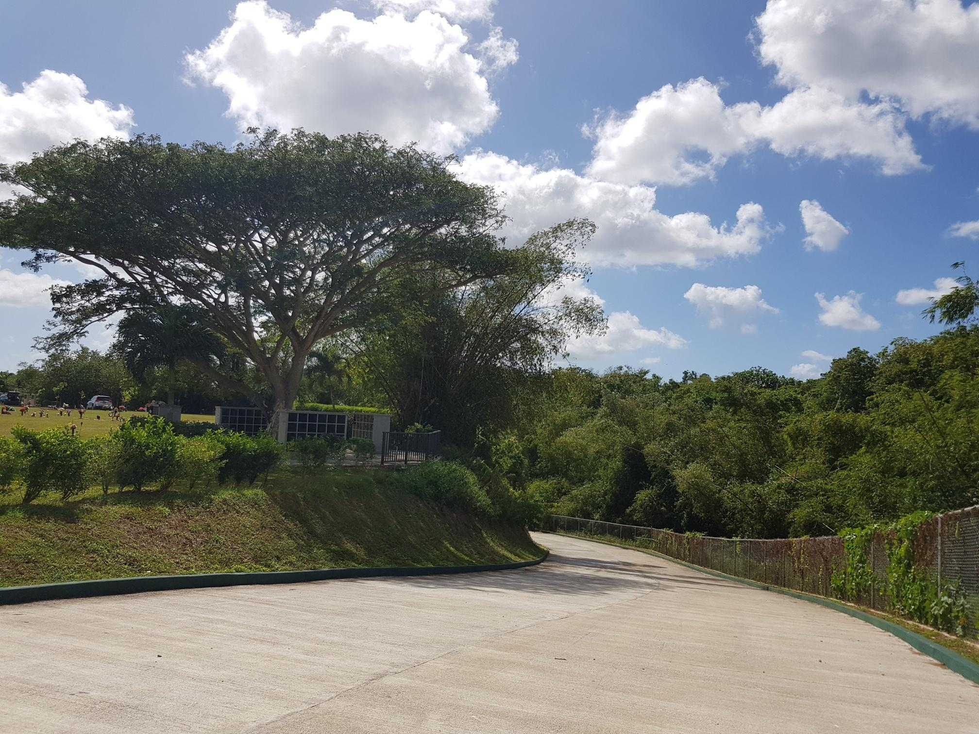Search   Living On Guam Realty
