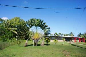 1365 Aguilar Drive/Rt. 17/Cross Isl, Yona, Guam 96915