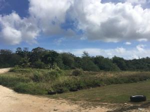 Dalalai St, Dededo, Guam 96929