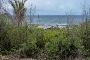 South Chalan Antigo, Talofofo, GU 96915
