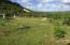 Sasayan Valley, Mangilao, GU 96913