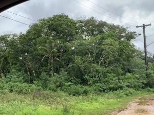 Kayen Cocora, Dededo, Guam 96929