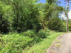 Manibusan Lane, Ordot-Chalan Pago, GU 96910