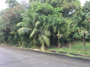 Calle De Los Marteres, Agat, GU 96915